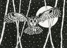 Urban Moon series: Swooping Owl
