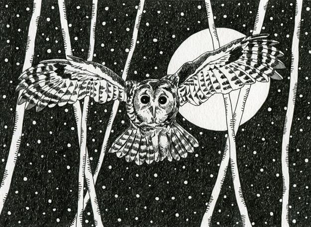 owlswoop2