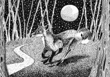 Urban Moon series: Fox