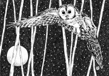 Urban Moon series: Owl