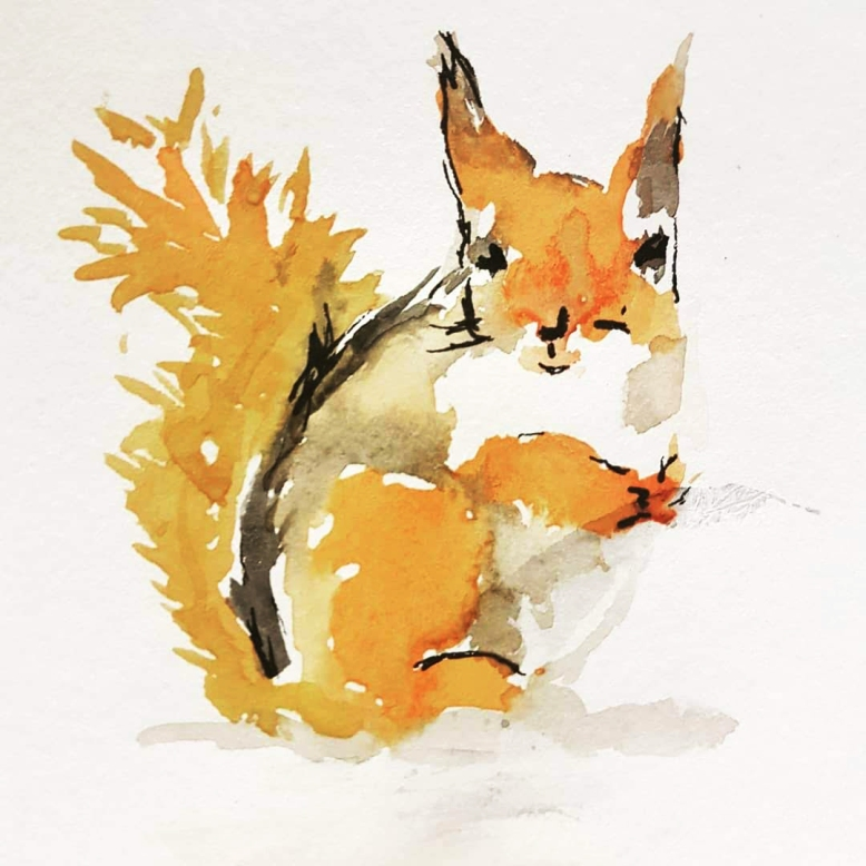 watercoloursquirrel